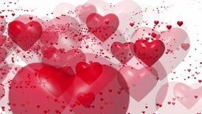 Πετώντας κόκκινες καρδιές στο λευκό απόθεμα βίντεο