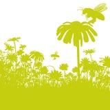 Πετώντας μέλισσες και πράσινα λουλούδια Στοκ φωτογραφίες με δικαίωμα ελεύθερης χρήσης
