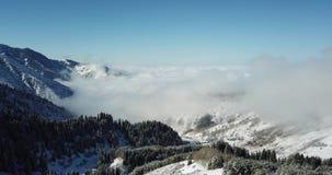 Πετώντας πέρα από τα χιονώδη κωνοφόρα δέντρα, τα λευκά σαν το χιόνι βουνά και τα σύννεφα Να πυροβολήσει άνωθεν με έναν κηφήνα απόθεμα βίντεο