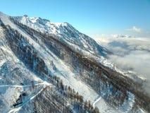 Πετώντας πέρα από τα χιονώδη βουνά, το ίχνος δασών και σκι στην ομίχλη Στοκ Εικόνα
