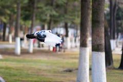 Πετώντας περιστέρι Στοκ φωτογραφία με δικαίωμα ελεύθερης χρήσης