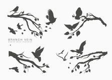 Πετώντας πουλιά κοπαδιών αριθμού καθορισμένα στον κλάδο δέντρων στοκ φωτογραφία