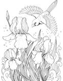 Πετώντας πουλί πέρα από το λουλούδι ίριδων, σχεδιασμός των λουλουδιών και των πουλιών Στοκ εικόνα με δικαίωμα ελεύθερης χρήσης