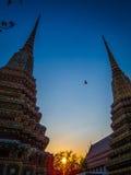 Πετώντας πουλί σε Wat Pho Στοκ φωτογραφίες με δικαίωμα ελεύθερης χρήσης
