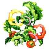Πετώντας σαλάτα το πιπέρι, την ντομάτα, το κρεμμύδι και τα πράσινα φύλλα που απομονώνονται με, απεικόνιση watercolor στο λευκό απεικόνιση αποθεμάτων