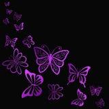 Πετώντας φωτεινή πεταλούδα στο σκοτάδι Στοκ Εικόνες
