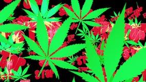 Πετώντας φύλλα καννάβεων με το μήνυμα ελεύθερη απεικόνιση δικαιώματος