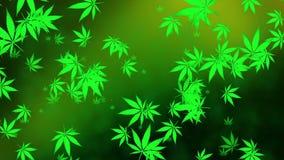 Πετώντας φύλλα καννάβεων σε πράσινο απεικόνιση αποθεμάτων