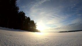 Πετώντας χιόνι Snowflakes πτώση απόθεμα βίντεο