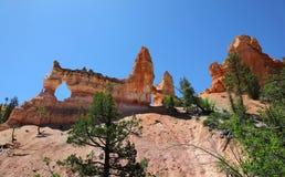 Πεύκα παραθύρων και ponderosa τοίχων βράχου στο εθνικό πάρκο φαραγγιών του Bryce Στοκ Εικόνα