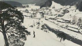 Πεύκο στο χειμερινό willage Kyn απόθεμα βίντεο