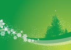 πεύκο Χριστουγέννων Στοκ φωτογραφίες με δικαίωμα ελεύθερης χρήσης