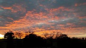 πεδία πέρα από το ηλιοβασί&lambd Στοκ Εικόνες