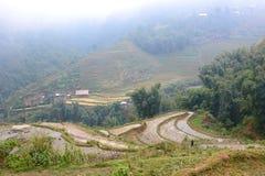Πεδία ρυζιού Sa PA Βιετνάμ στοκ φωτογραφίες