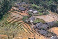 Πεδία ρυζιού Sa PA Βιετνάμ στοκ εικόνες με δικαίωμα ελεύθερης χρήσης
