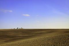 πεδία moravian στοκ φωτογραφία με δικαίωμα ελεύθερης χρήσης