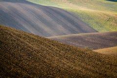 πεδία moravian στοκ εικόνα