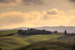πεδία tuscan Στοκ φωτογραφία με δικαίωμα ελεύθερης χρήσης