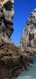 Πελεκάνος που σκαρφαλώνει στο Los Arcos (τέλος εδαφών) σε Cabo SAN Lucas Baja Μεξικό Στοκ φωτογραφίες με δικαίωμα ελεύθερης χρήσης