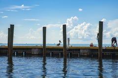Πελεκάνος στην αποβάθρα Στοκ φωτογραφία με δικαίωμα ελεύθερης χρήσης