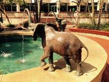 Πηγή ελεφάντων Στοκ Φωτογραφία