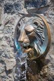 Πηγή λιονταριών Στοκ εικόνες με δικαίωμα ελεύθερης χρήσης