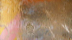 Πηγή καταρρακτών, μορφές που βλέπουν από πίσω από έναν καταρράκτη απόθεμα βίντεο