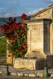 Πηγή με τα κόκκινα τριαντάφυλλα Στοκ Εικόνες