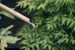Πηγή νερού μπαμπού στο υπόβαθρο φύσης στοκ φωτογραφία με δικαίωμα ελεύθερης χρήσης