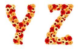 Πηγή λουλουδιών χρώματος από τα λουλούδια gerber που απομονώνονται Στοκ φωτογραφίες με δικαίωμα ελεύθερης χρήσης