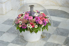 Πηγή λουλουδιών Στοκ Εικόνες