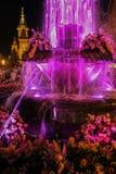 Πηγή που φωτίζεται με το πορφυρό φως τη νύχτα Timisoara, Ρώμη Στοκ Εικόνες