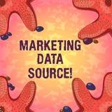 Πηγή στοιχείων μάρκετινγκ κειμένων γραψίματος λέξης Επιχειρησιακή έννοια για την οργάνωση σύνδεσης σε μια βάση δεδομένων από έναν απεικόνιση αποθεμάτων