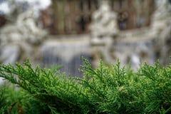 Πηγή στο τετράγωνο πάρκων Valentino στο Τουρίνο, Ιταλία στοκ εικόνα
