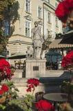 Πηγή της Diana σε Lviv Στοκ εικόνα με δικαίωμα ελεύθερης χρήσης