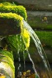 Πηγή φυσικού μεταλλικού νερού Στοκ εικόνα με δικαίωμα ελεύθερης χρήσης