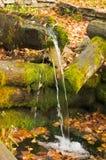 Πηγή φυσικού μεταλλικού νερού Στοκ Εικόνες