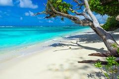 Πηγή Anse d'Argent - παραλία στο Λα Digue νησιών στις Σεϋχέλλες Στοκ εικόνες με δικαίωμα ελεύθερης χρήσης