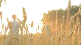 Πηγαίνετε αγρότης στον τομέα σίτου φιλμ μικρού μήκους