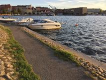 πηγαίνετε αφήνει Στοκ φωτογραφία με δικαίωμα ελεύθερης χρήσης