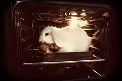 πηγαίνετε vegan Προώθηση της χορτοφαγίας, για να μην σκοτώσει τα ζώα για το κρέας Στοκ Εικόνες