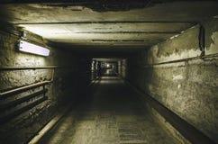 Πηγαίνοντας γούρνα η υπόγεια σήραγγα Στοκ εικόνα με δικαίωμα ελεύθερης χρήσης
