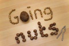 ` Πηγαίνοντας καρύδια ` με τα φυστίκια, τα ξύλα καρυδιάς, την κροτίδα καρύδων και καρυδιών Στοκ Εικόνες