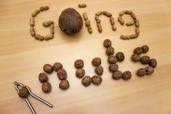 Πηγαίνοντας καρύδια ` φράσης ` με τα φυστίκια, τα ξύλα καρυδιάς και την καρύδα + την κροτίδα καρυδιών Στοκ φωτογραφίες με δικαίωμα ελεύθερης χρήσης
