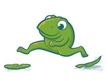 Πηδώντας βάτραχος Στοκ Φωτογραφία