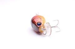 πιάνοντας τα ψάρια δελεάστε αρπακτικό Στοκ φωτογραφία με δικαίωμα ελεύθερης χρήσης