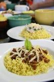 Πιάτα βόειου κρέατος και κοτόπουλου των κινεζικών νουντλς στην κουζίνα Στοκ Φωτογραφίες
