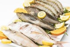 Πιάτο ακατέργαστων ψαριών και γαρίδων που απομονώνεται στο λευκό Στοκ Εικόνα