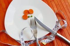 Πιάτο διατροφής των λαχανικών Στοκ φωτογραφίες με δικαίωμα ελεύθερης χρήσης