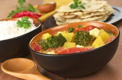 πιάτο Ινδός κάρρυ Στοκ Εικόνα